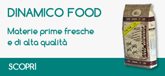banner dinamico food